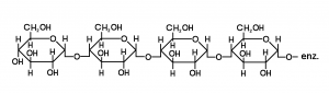 Starch: chemical name amylose