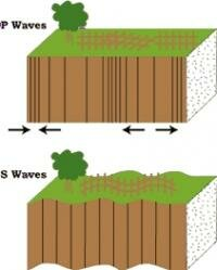 P and S waves: Image courtesy of USGS.